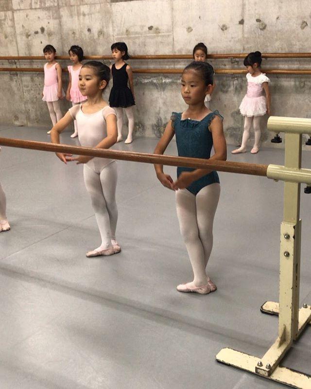 ジュニア1のレッスン風景ですスタジオに来たら集中する・一生懸命取り組む・努力する、、、バレエを通して、自分がやると決めた事には精一杯取り組める子になってほしいと思います今日もみんないい汗かいてました️ #トサカバレエスタジオ#トサカ#バレエスタジオ#バレエ#柔軟#ストレッチ#体幹#リズム感#姿勢#リズム感#ballet#balletdancer#balletclass #balletshoes #バレエ教室#杉並バレエ#杉並区#杉並区バレエ荻窪バレエスタジオ#上井草バレエスタジオ#西荻窪バレエスタジオ#吉祥寺バレエスタジオ#バレエレッスン#トレーニング#ポアント#幼稚園#小学生#保育園#習い事#ママバレエ#オープンクラス#習い事#バレエ発表会